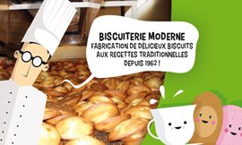 creation site internet BISCUITERIE MODERNE