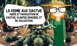 creation site internet la ferme aux cactus