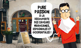 creation site internet PUREPASSION